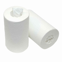 Mini Papierrol cellulose, 2 laags, 12 rollen, zonder koker